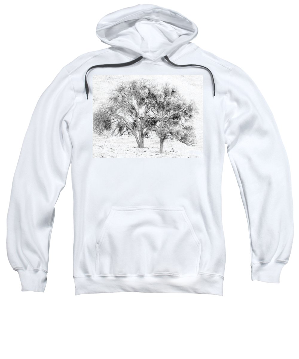 Trees Sweatshirt featuring the photograph Mistletoe Tree In Black And White by Karen W Meyer