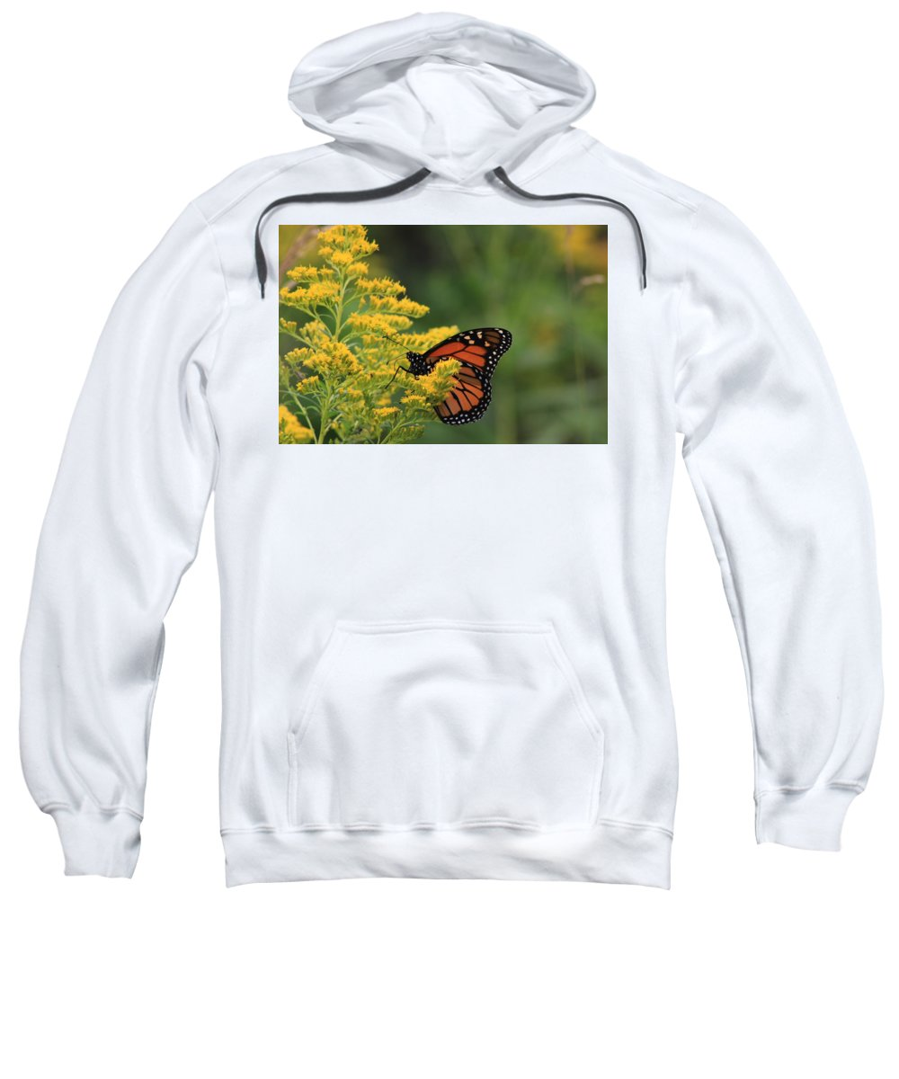 Monarch Sweatshirt featuring the photograph Monarchy by Justin Hicks