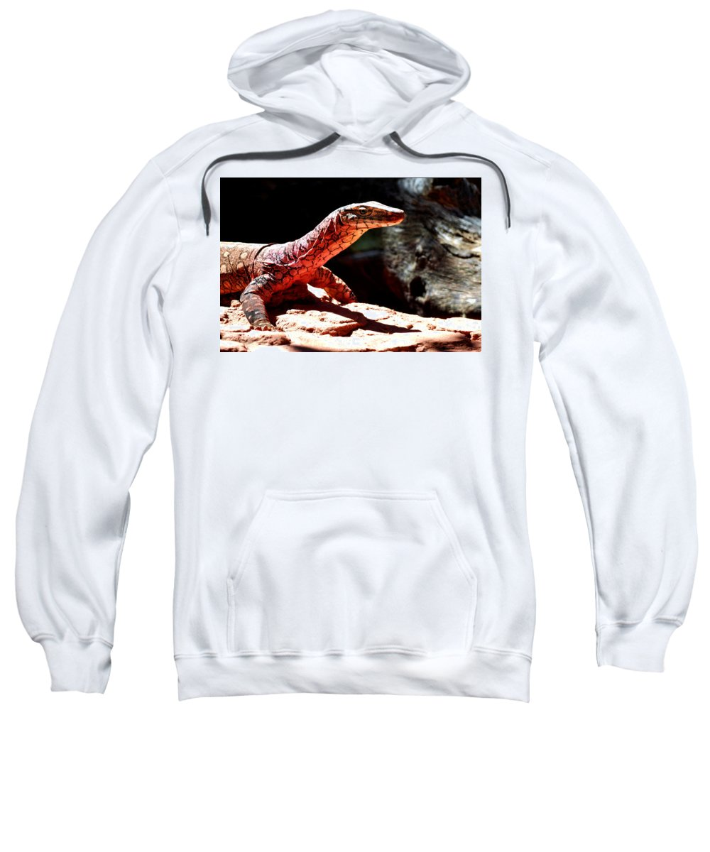 Monitor Lizard Sweatshirt featuring the digital art Monitor Lizard by Bert Mailer
