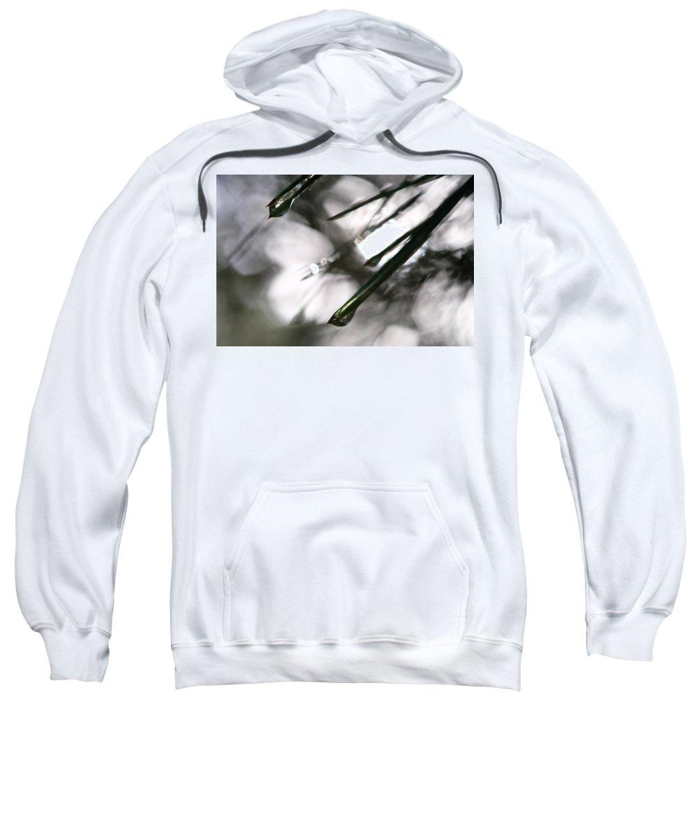 Water Sweatshirt featuring the photograph Morning Shower by Jessica Myscofski