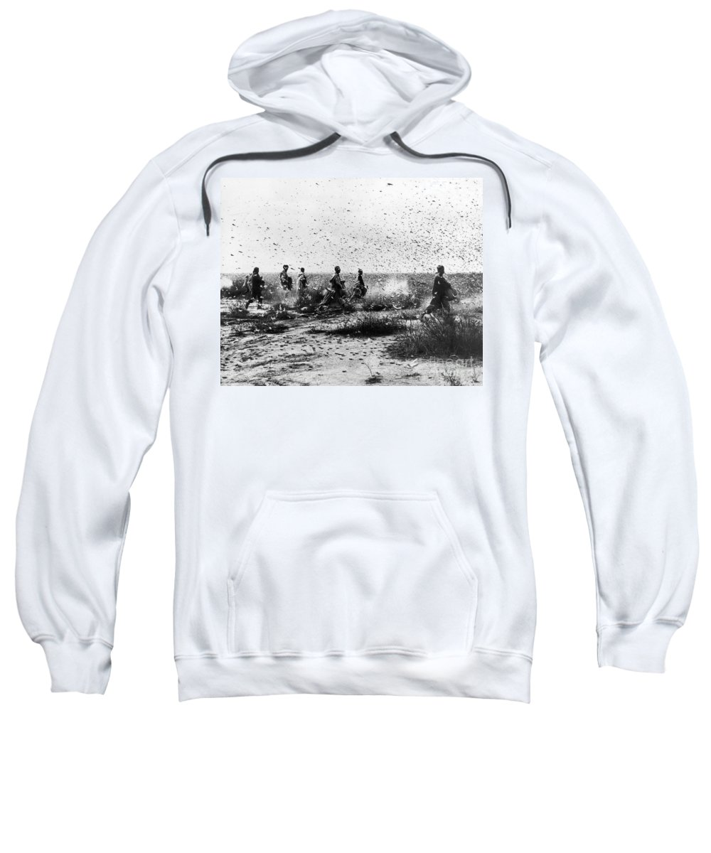 1954 Sweatshirt featuring the photograph Morocco: Locusts, 1954 by Granger