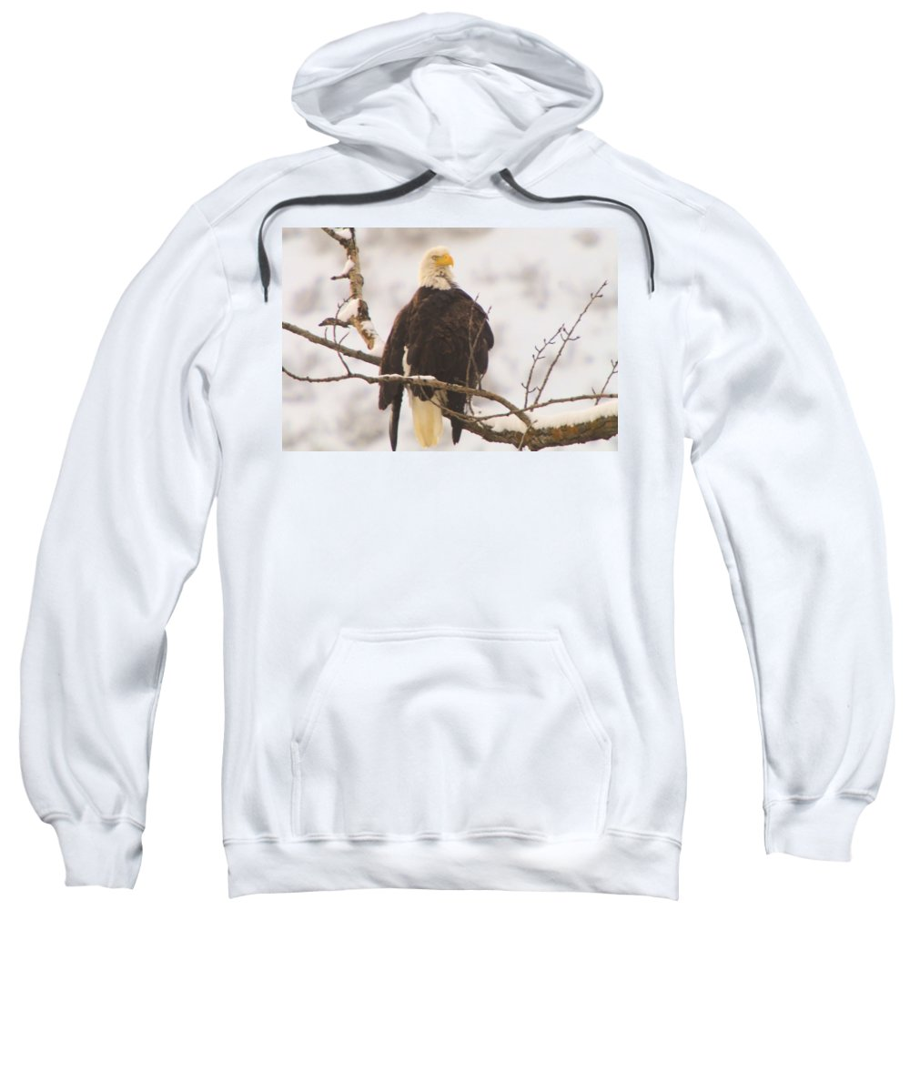 Eagles Sweatshirt featuring the photograph Mr Happy Face by Jeff Swan
