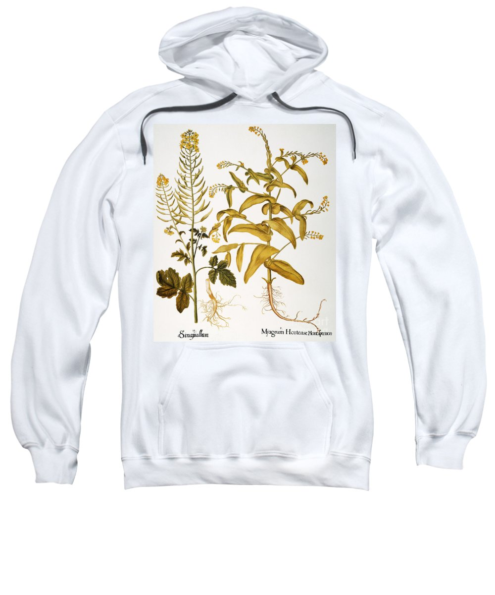 1613 Sweatshirt featuring the photograph Mustard Plant, 1613 by Granger