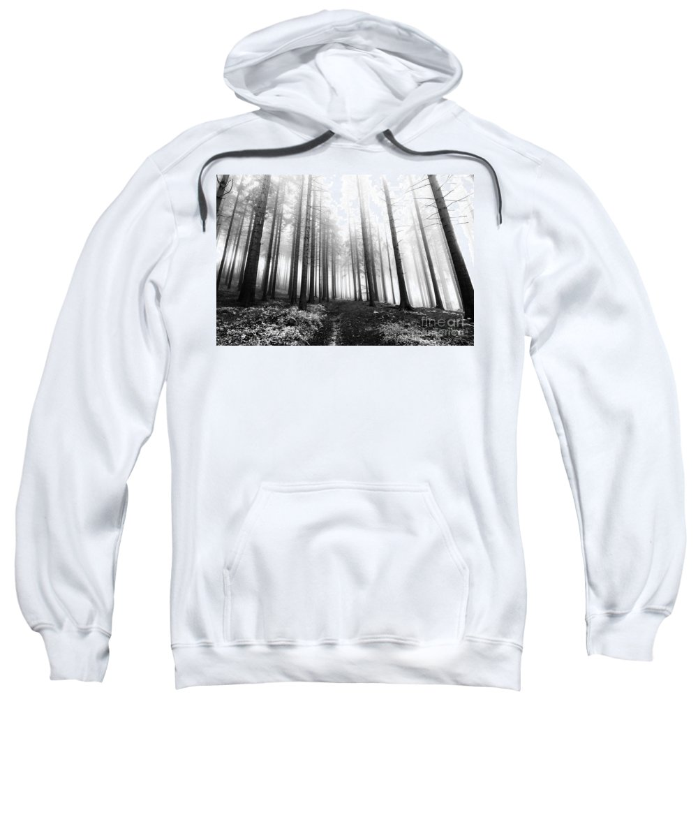 Bleak Sweatshirt featuring the photograph Mysterious Forest by Michal Boubin