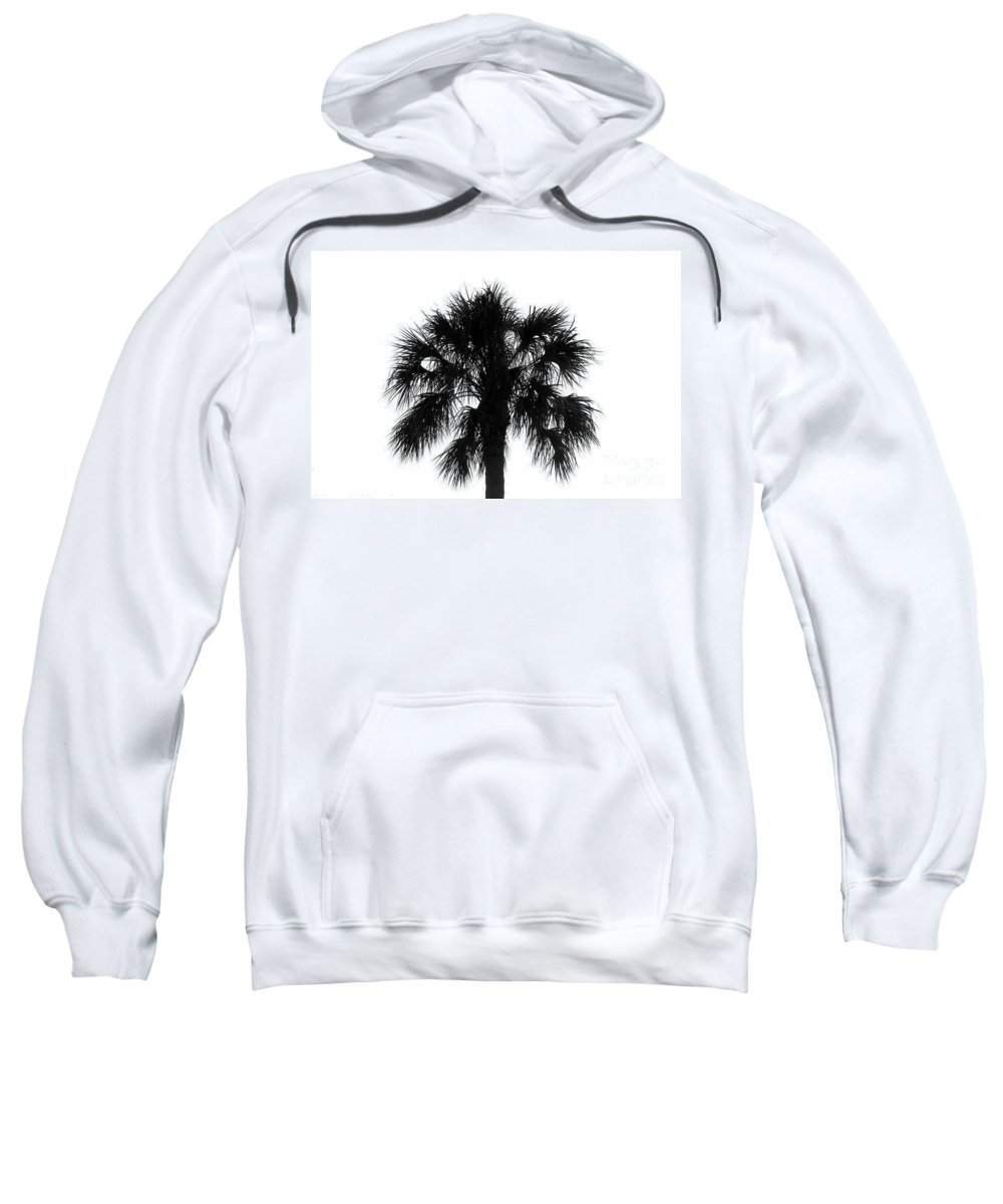 Palm Tree Sweatshirt featuring the photograph Naked Palm by David Lee Thompson