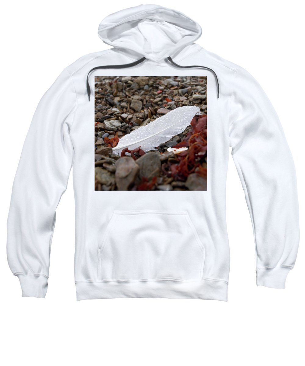Lehtokukka Sweatshirt featuring the photograph Nameless Feather 1 by Jouko Lehto