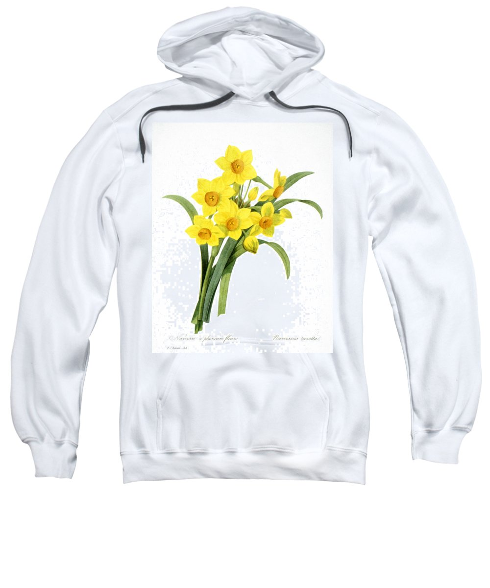 1833 Sweatshirt featuring the photograph Narcissus (n. Tazetta) by Granger