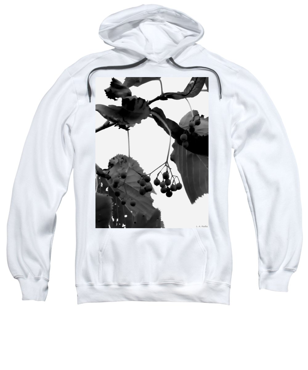 Macro Sweatshirt featuring the photograph Natural Composition by Lauren Radke