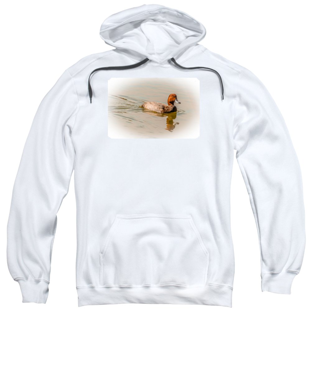 Pond Sweatshirt featuring the photograph Natural Redhead by Leticia Latocki