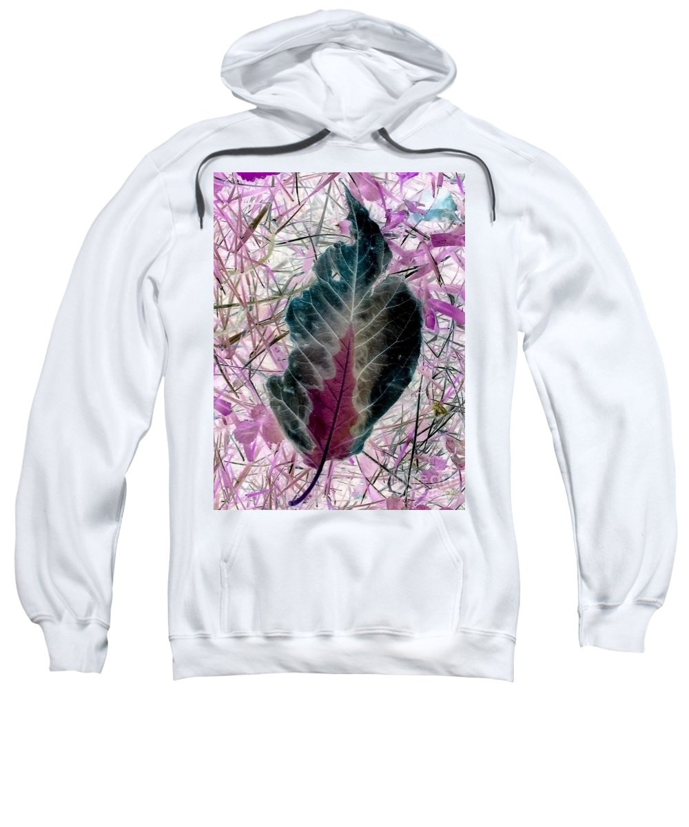 Leaf Sweatshirt featuring the photograph Nature Abstract Of Leaf And Grass by Debra Lynch