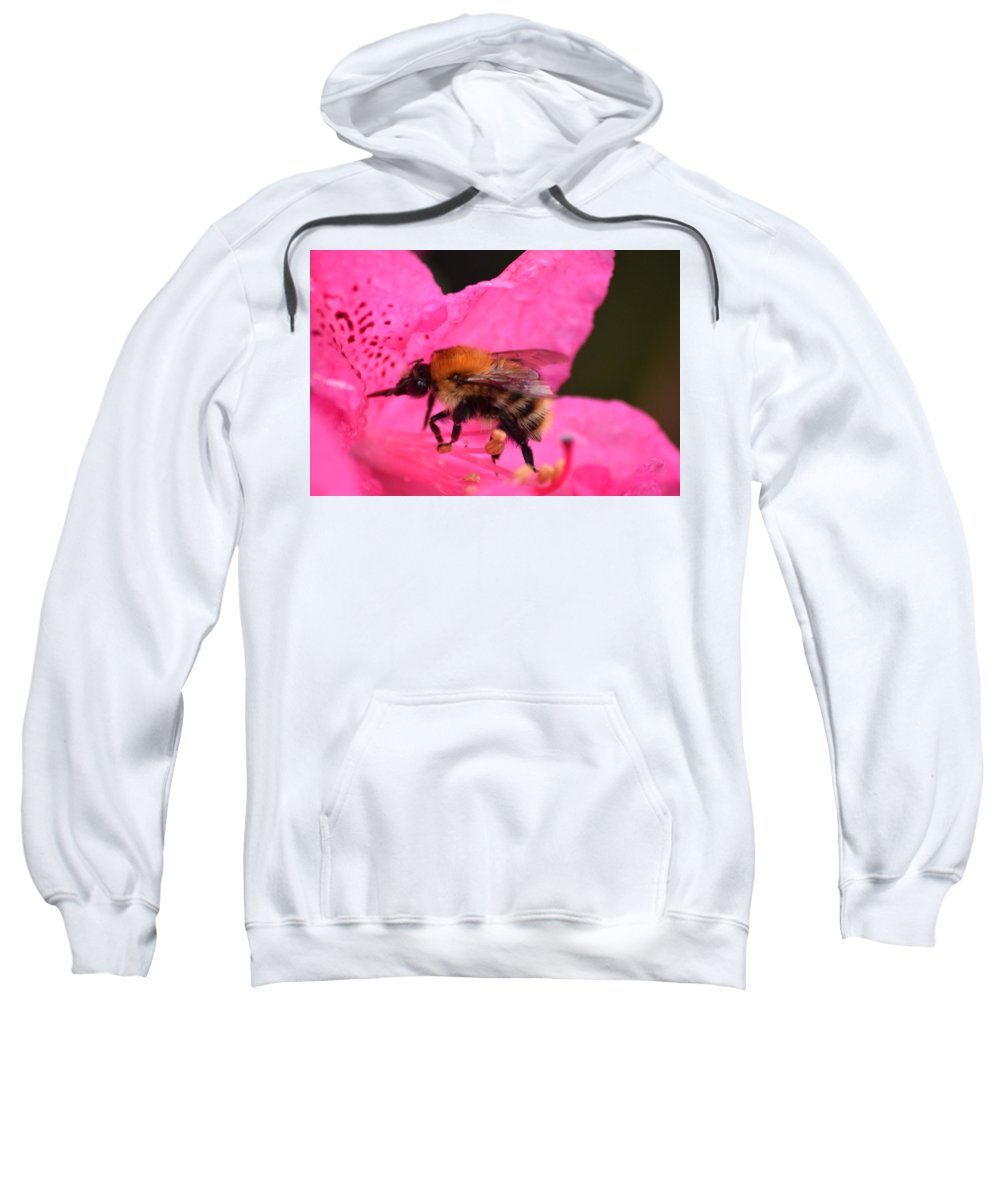 Bee Sweatshirt featuring the photograph Nectar Of The Gods by Allan Charlton