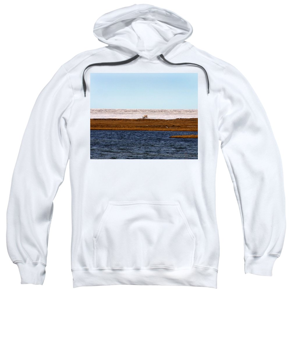 Arctic Sweatshirt featuring the photograph North Slope by Anthony Jones