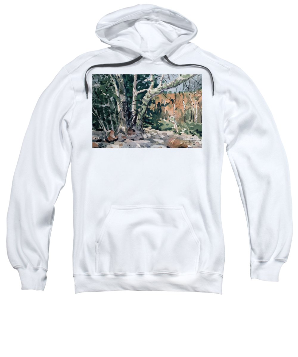 Watercolor Sweatshirt featuring the painting Oak Creek Canyon by Donald Maier