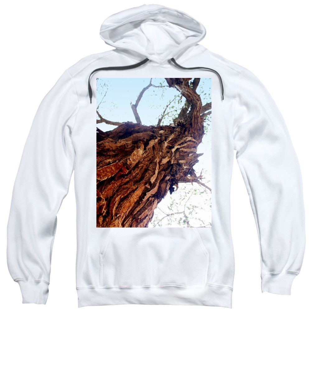 Tree Sweatshirt featuring the photograph Old Tree by Marty Koch