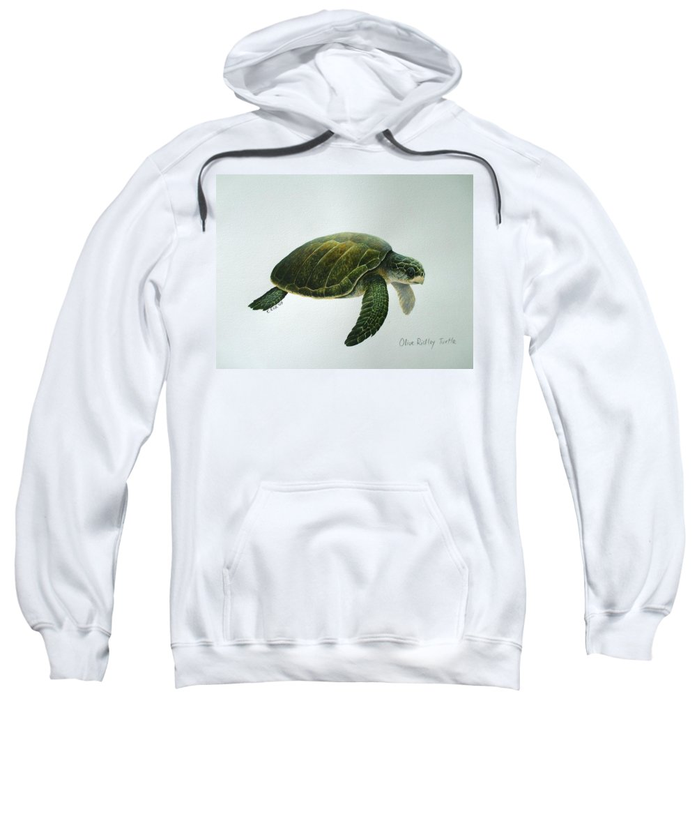 Olive Ridley Turtle Sweatshirt featuring the painting Olive Ridley Turtle by Christopher Cox