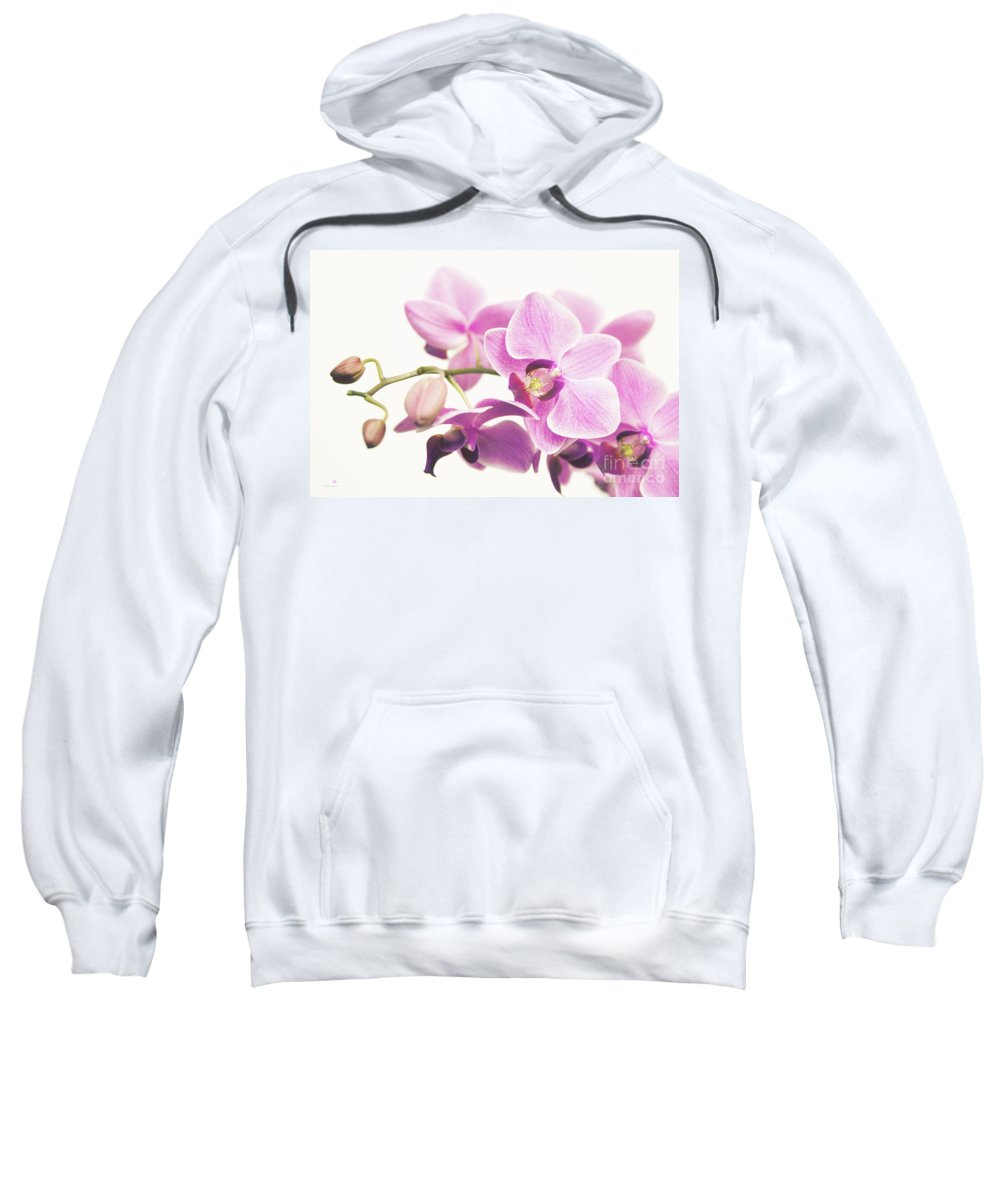 Orchid Sweatshirt featuring the photograph orchid II by Hannes Cmarits