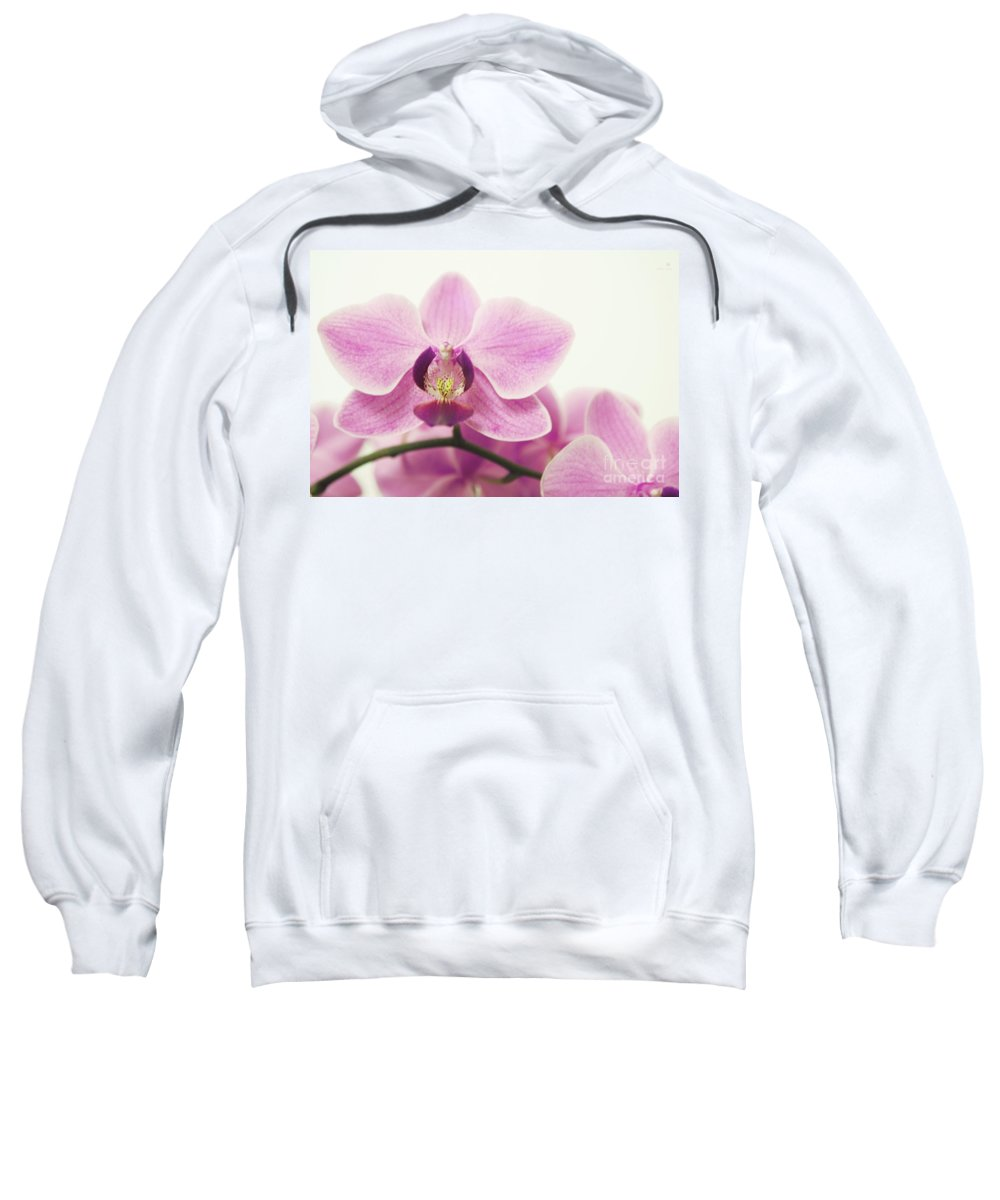 Orchid Sweatshirt featuring the photograph orchid III by Hannes Cmarits
