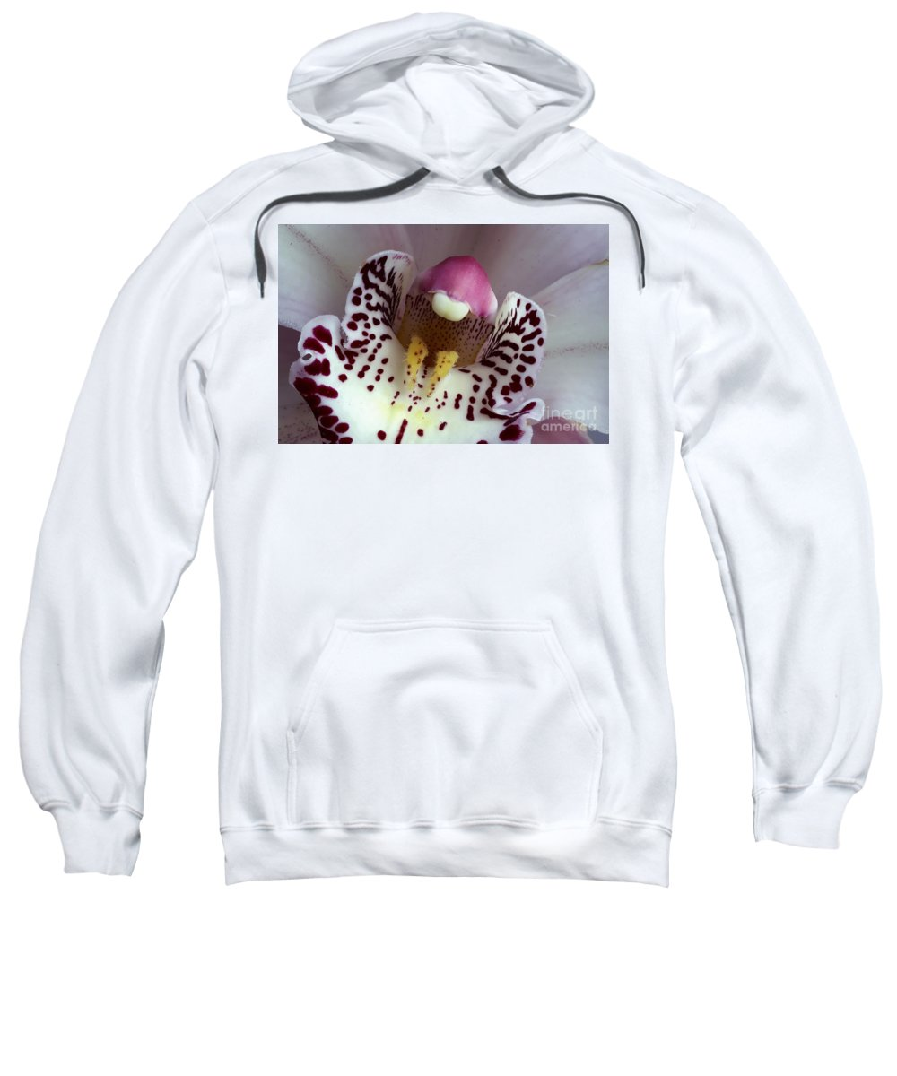 Bloom Sweatshirt featuring the photograph Orchid Like A Muzzle by Michal Boubin