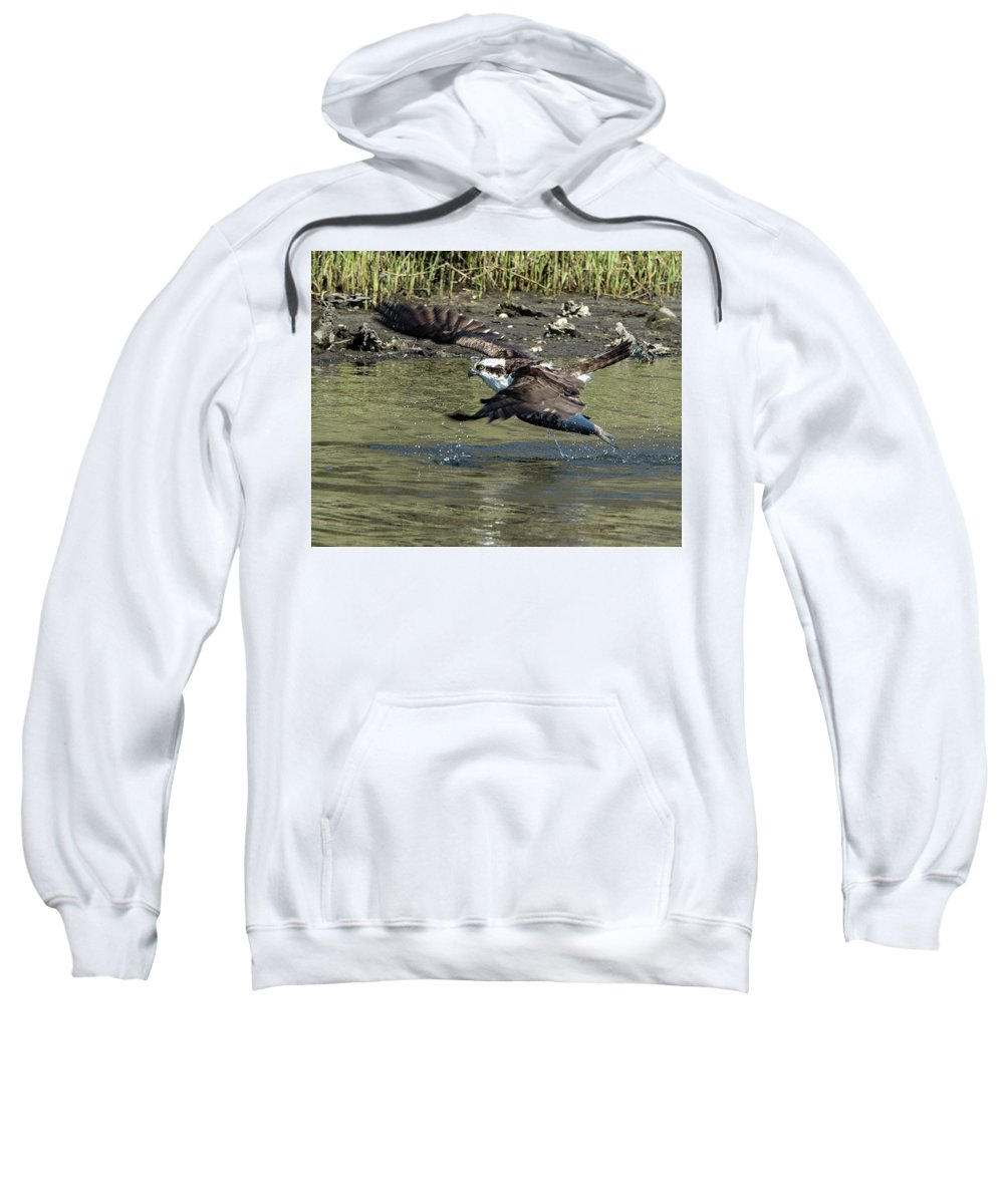 Osprey Sweatshirt featuring the photograph Osprey Fish That Got Away by KenDidIt Photography