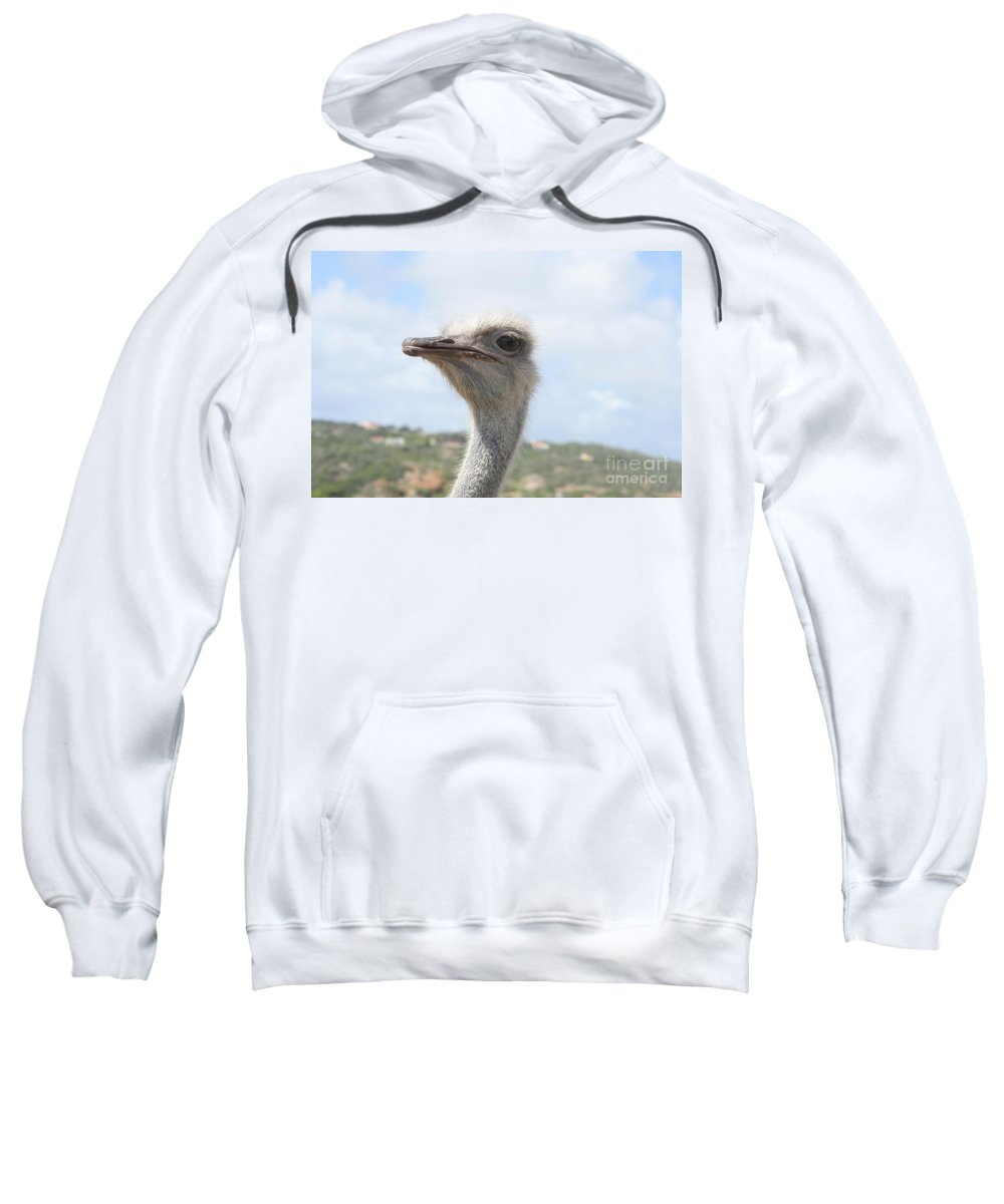 Ostrich Sweatshirt featuring the photograph Ostrich Head II by Thomas Marchessault