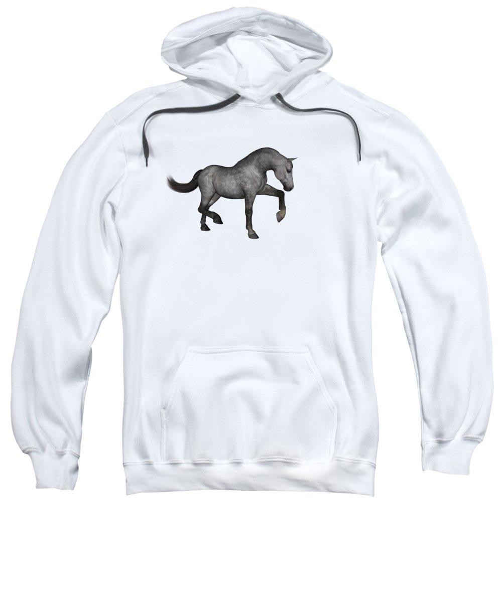 Filly Sweatshirts
