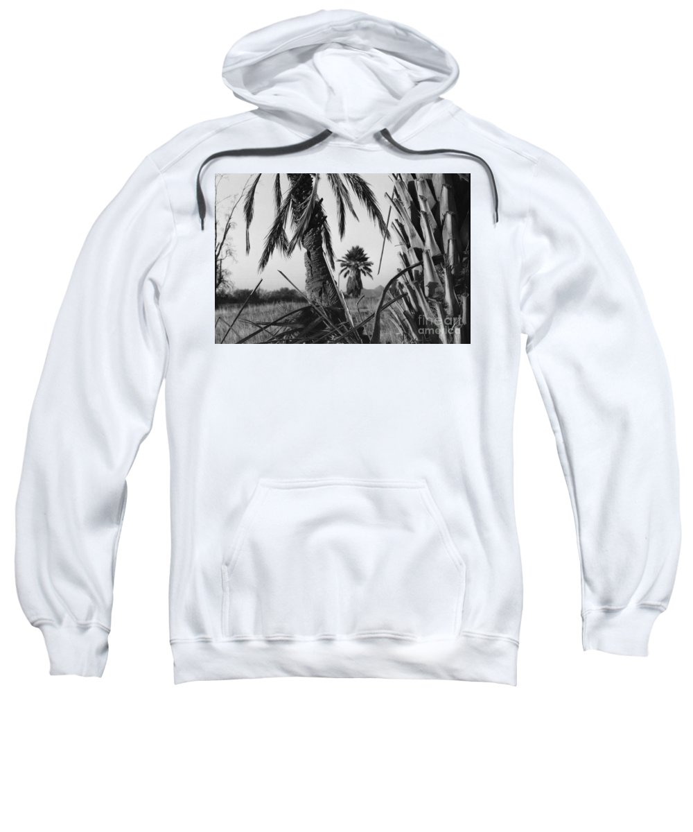 Black And White Photograpy Sweatshirt featuring the photograph Palm In View Bw Horizontal by Heather Kirk