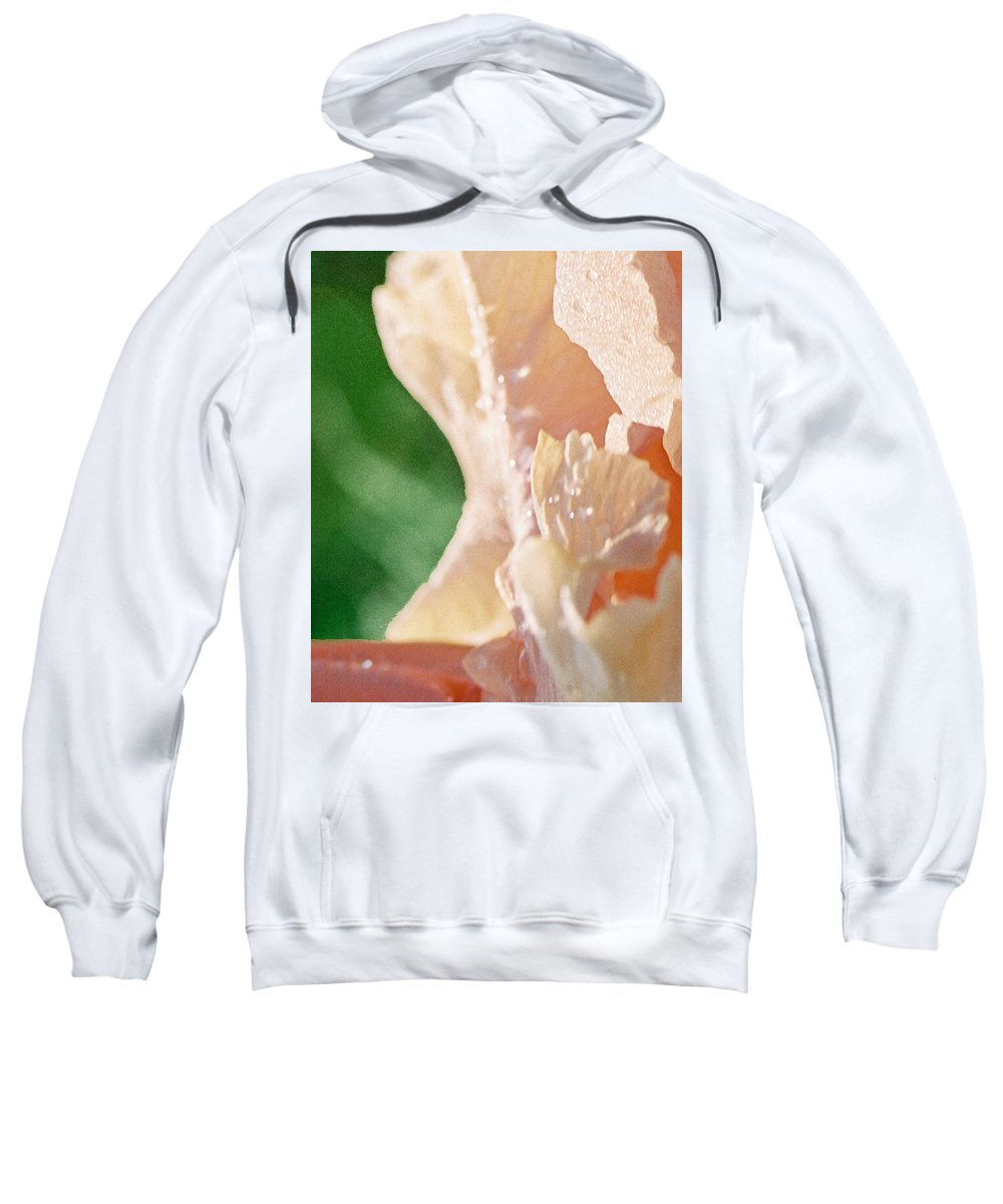 Abstract Sweatshirt featuring the photograph panel two from Iris by Steve Karol