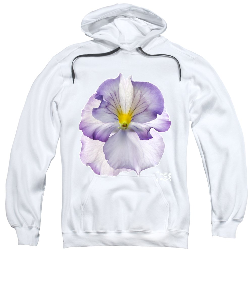 Pansy Genus Viola Sweatshirt featuring the photograph Pansy by Tony Cordoza