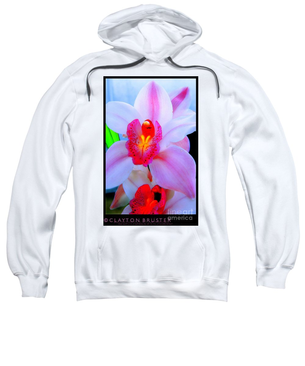 Clay Sweatshirt featuring the photograph Pastel Pagentry by Clayton Bruster