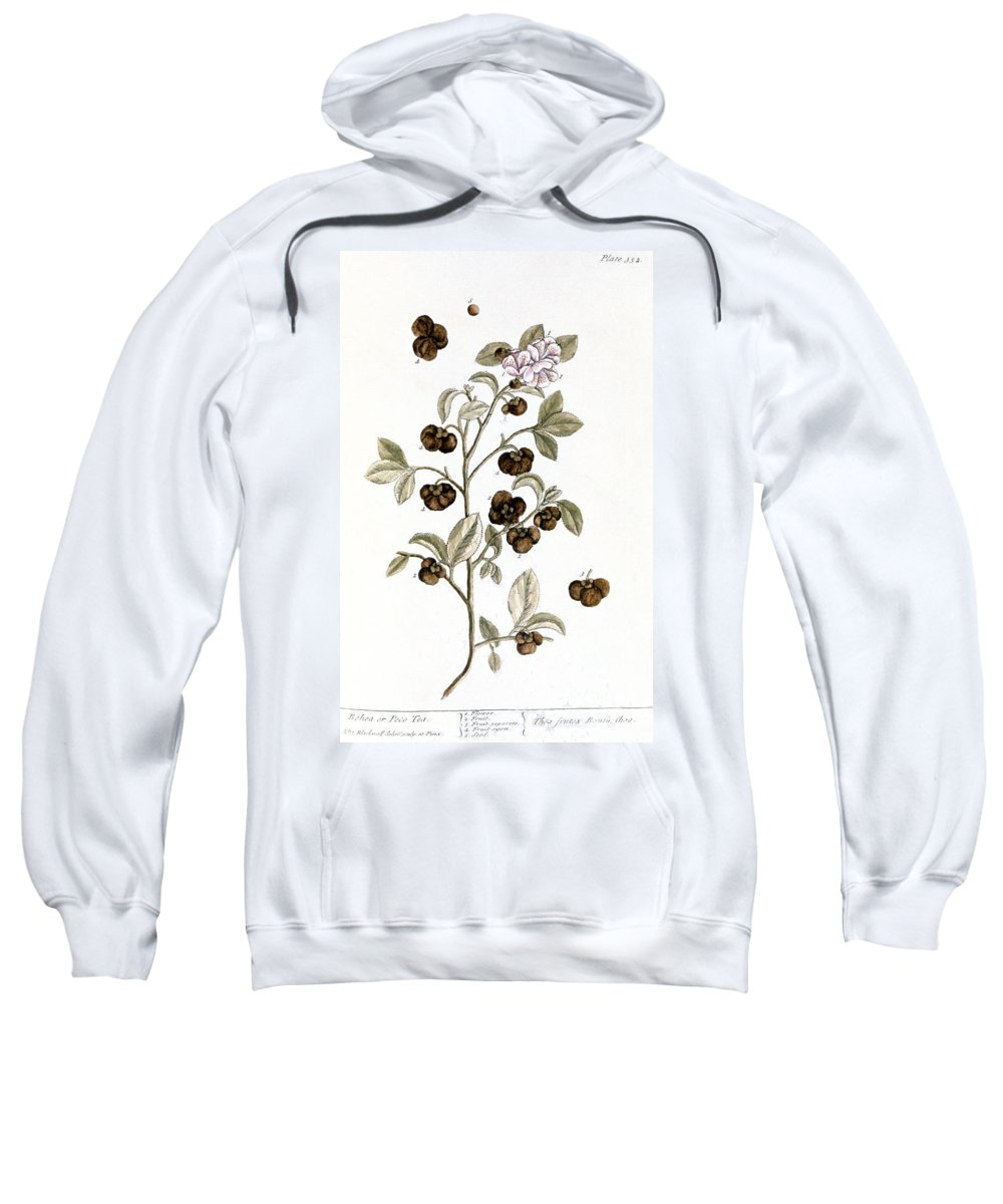 1730s Sweatshirt featuring the photograph Peco Tea, 1735 by Granger