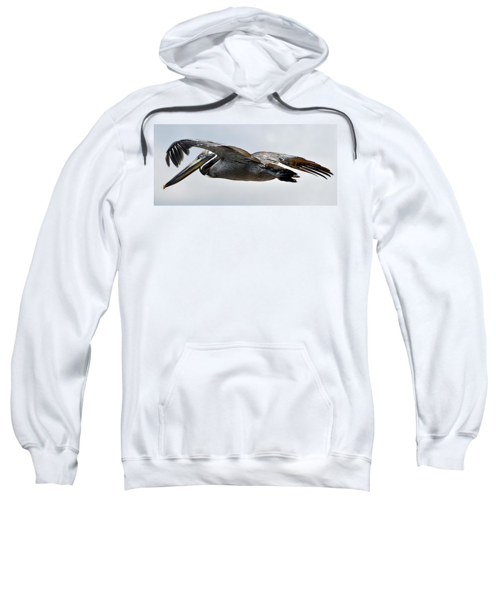 Original Sweatshirt featuring the photograph Pelican In Flight by WAZgriffin