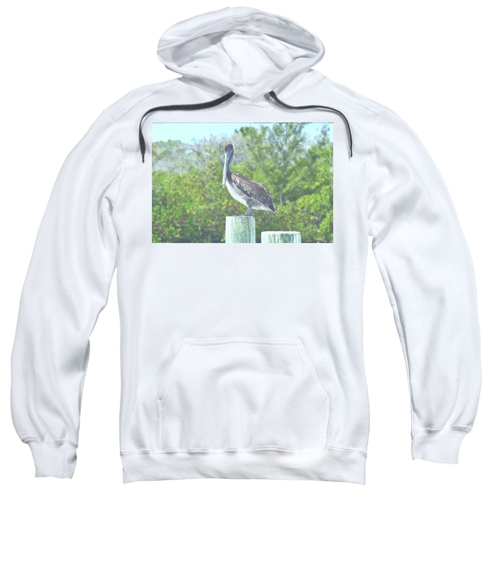 Pelican Sweatshirt featuring the photograph Pelican On Post by Mark Madion