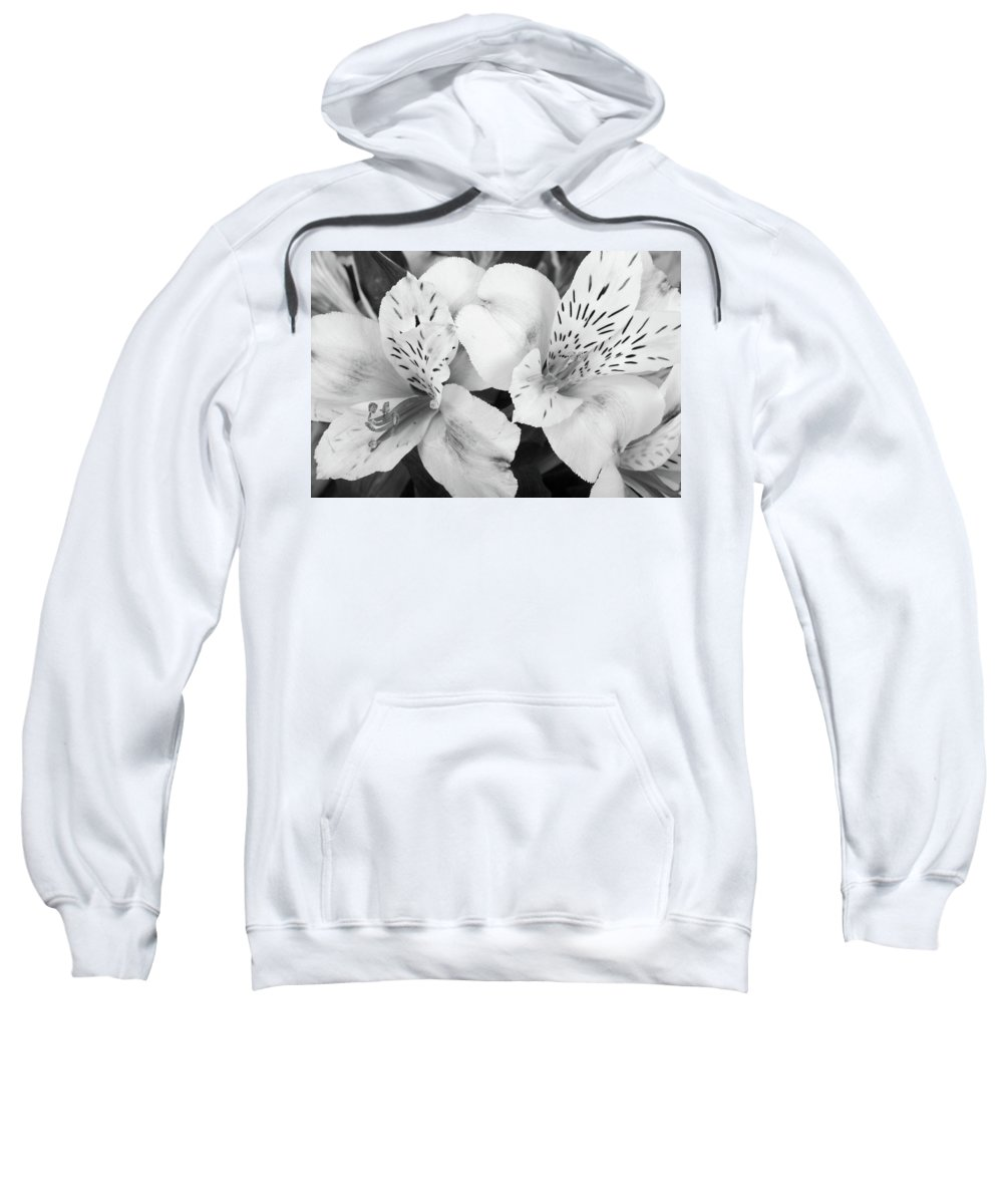 Peruvian Lilies Sweatshirt featuring the photograph Peruvian Lilies Flowers Black And White Print by James BO Insogna