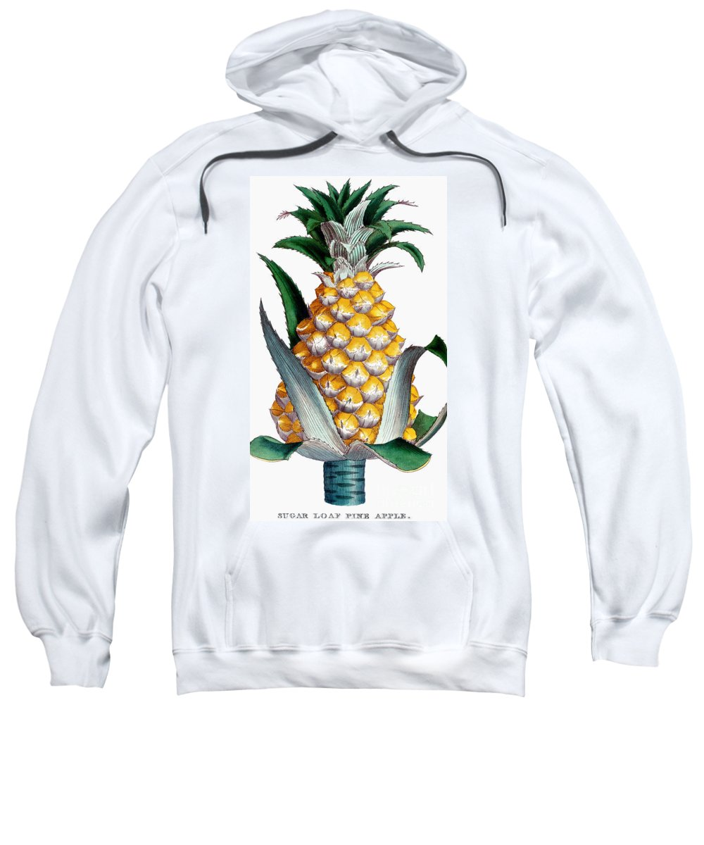 1789 Sweatshirt featuring the photograph Pineapple, 1789 by Granger