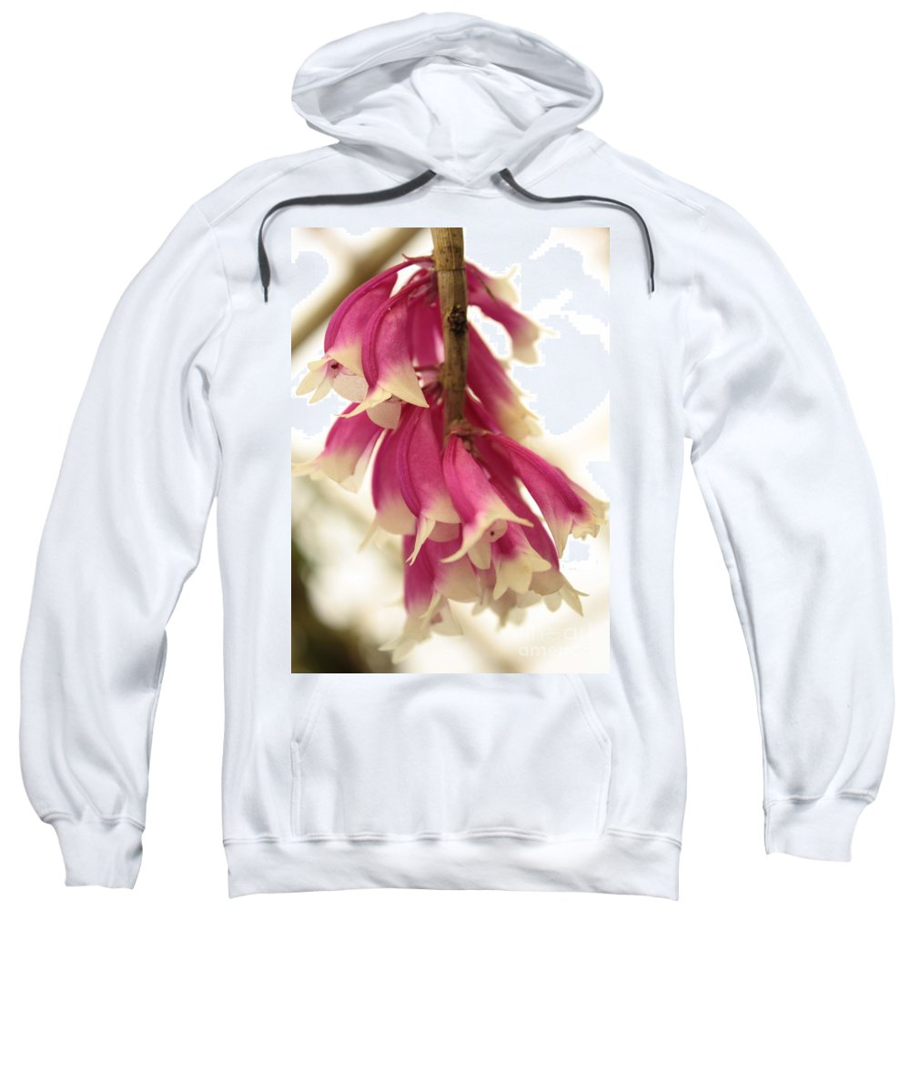 Pink And White Flowers Sweatshirt featuring the photograph Pink And White Bells by Carol Groenen