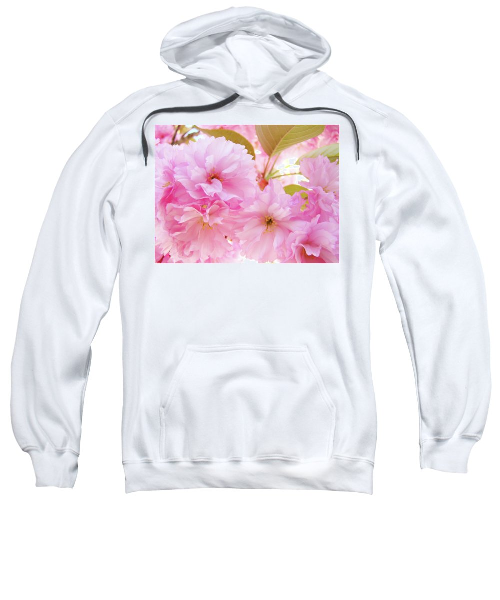 Blossom Sweatshirt featuring the photograph Pink Blossoms Art Prints Canvas Spring Tree Blossoms Baslee Troutman by Baslee Troutman