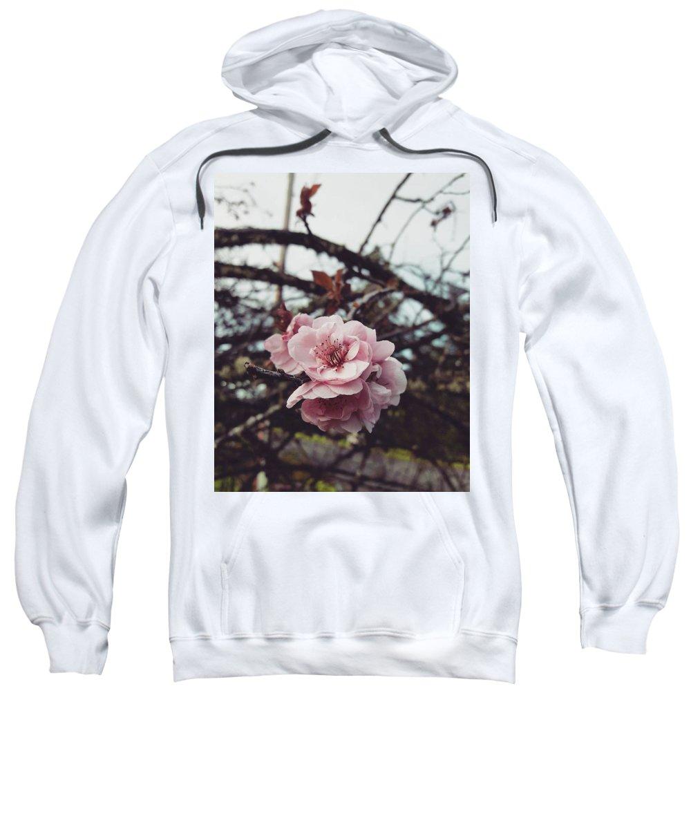 Flowers Sweatshirt featuring the photograph Pink Flower by Shawna Walker