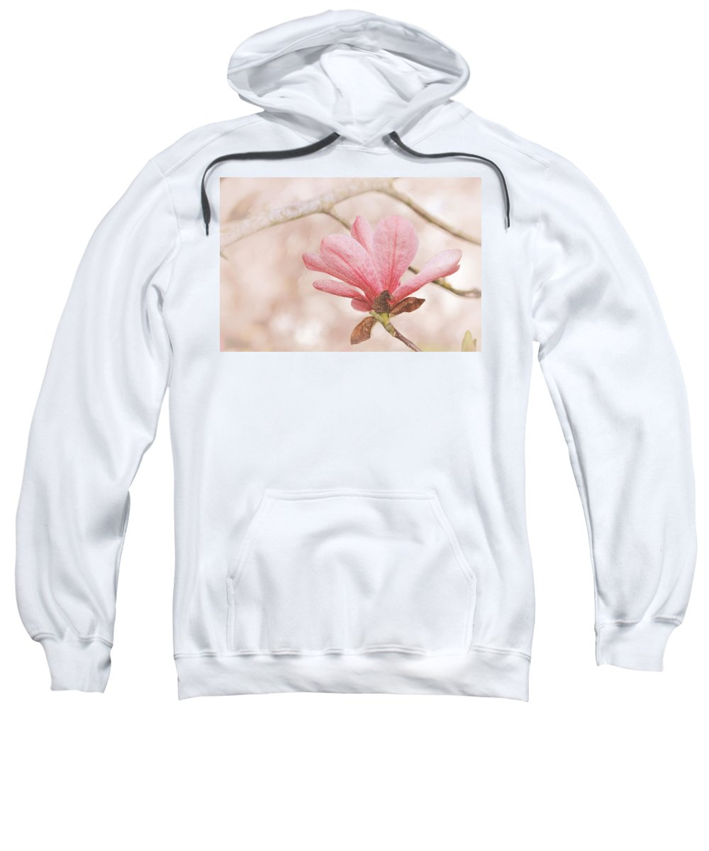 Floral Sweatshirt featuring the photograph Pink Magnolia Flower by Brent Davis
