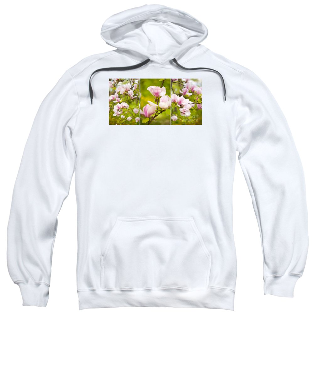 Magnoliaceae Sweatshirt featuring the photograph Pink Magnolia Triptych by Arletta Cwalina