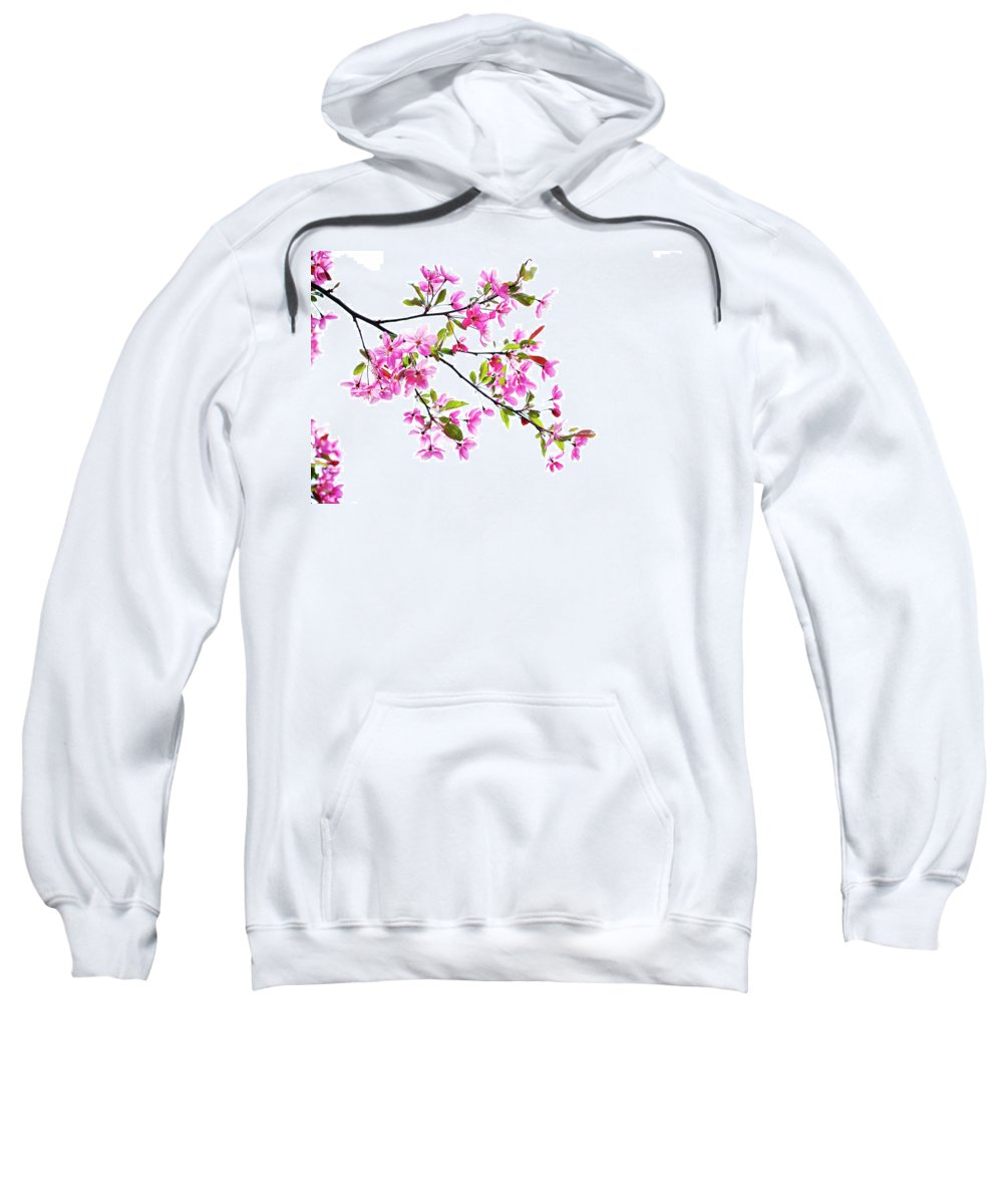 Pink Sweatshirt featuring the photograph Pink Spring by Marilyn Hunt