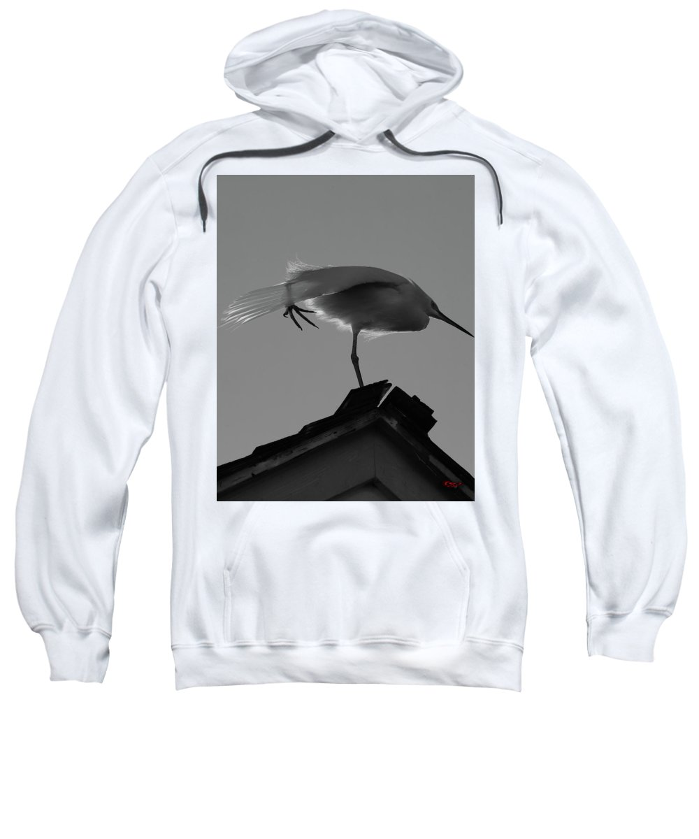 Nature Sweatshirt featuring the photograph Poised Egret by Lorenzo Williams