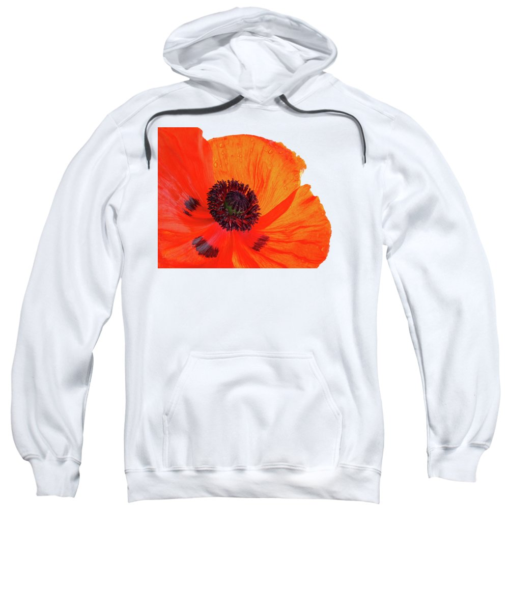 Single Red Poppy Sweatshirt featuring the photograph Poppy With Raindrops 3 by Gill Billington