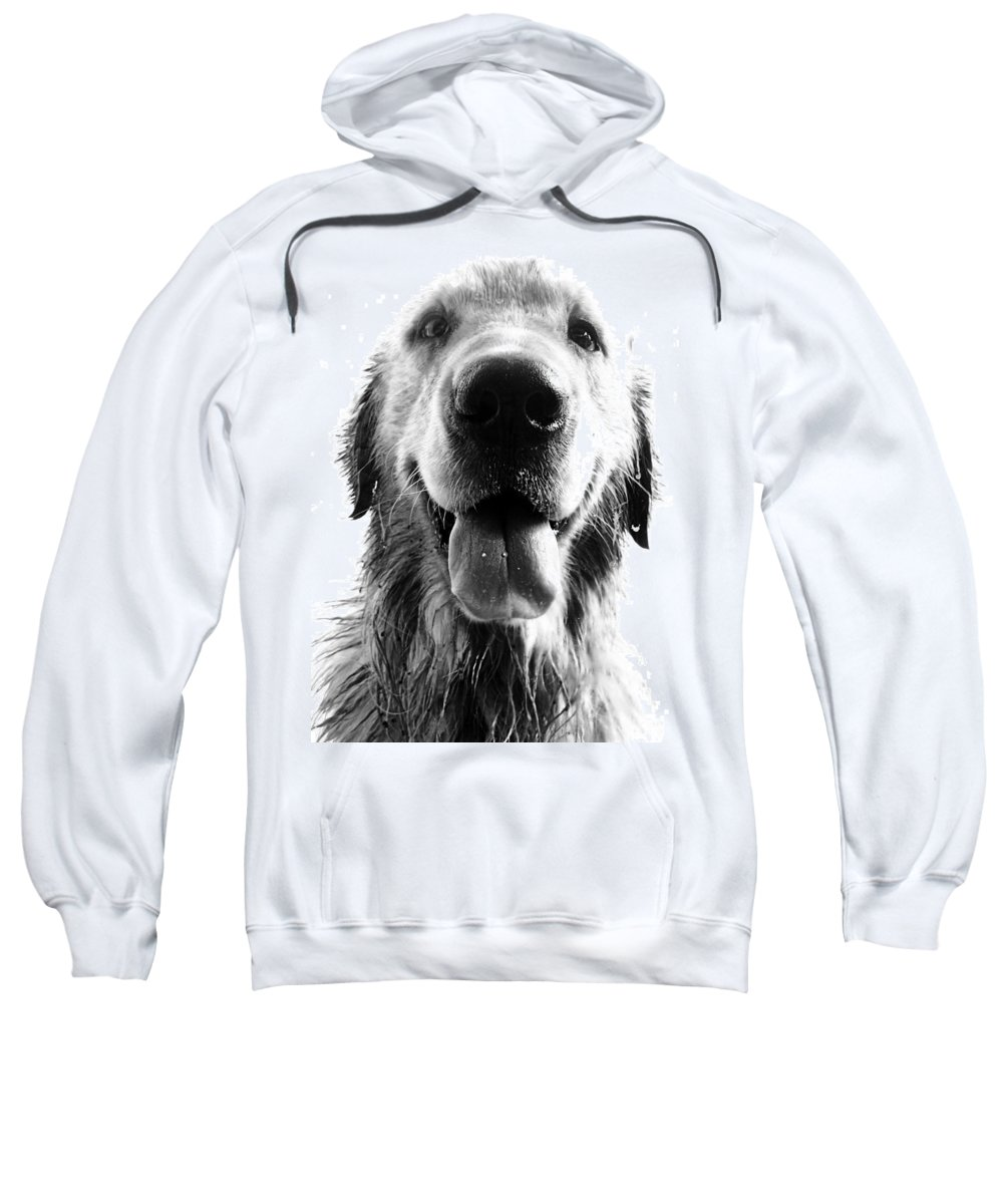 Argentina Sweatshirt featuring the photograph Portrait Of A Happy Dog by Osvaldo Hamer