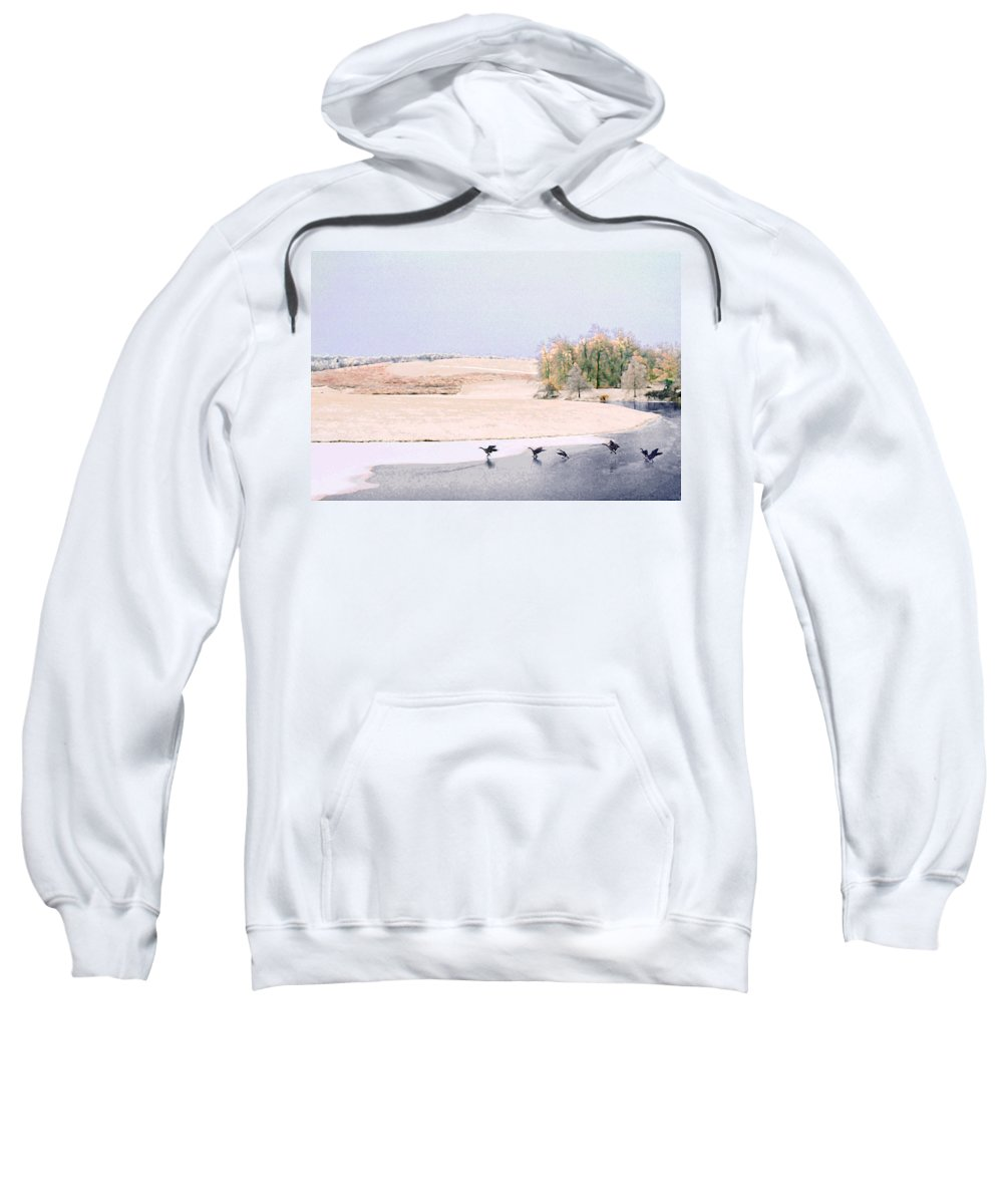 Landscape Sweatshirt featuring the photograph Powell Gardens In Winter by Steve Karol
