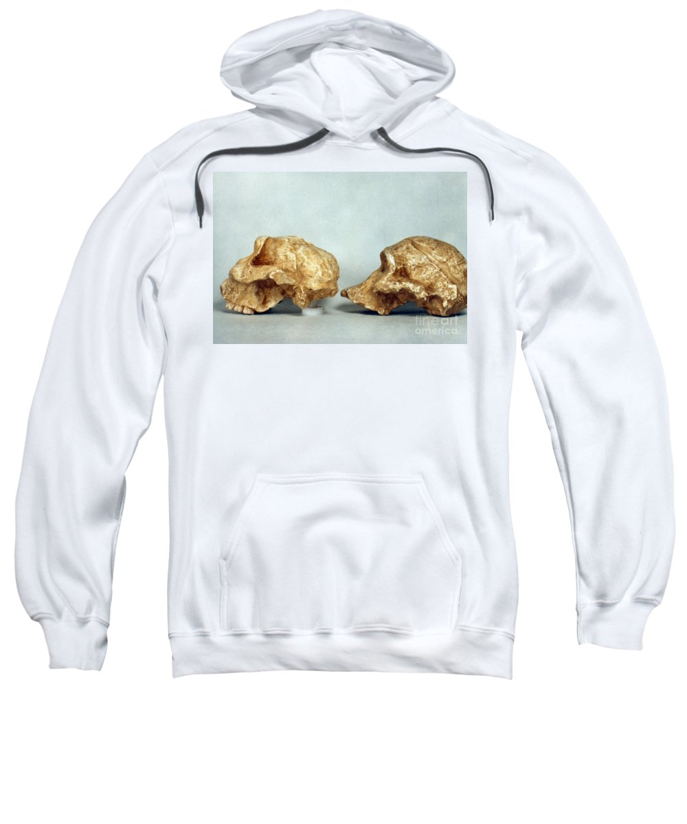African Sweatshirt featuring the photograph Prehistoric Skulls by Granger