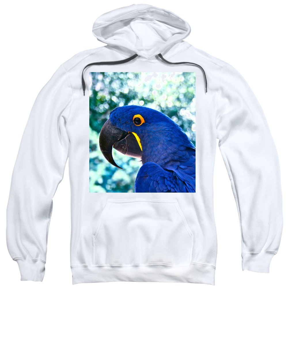 Bird Sweatshirt featuring the photograph Proud Profile by Gwyn Newcombe