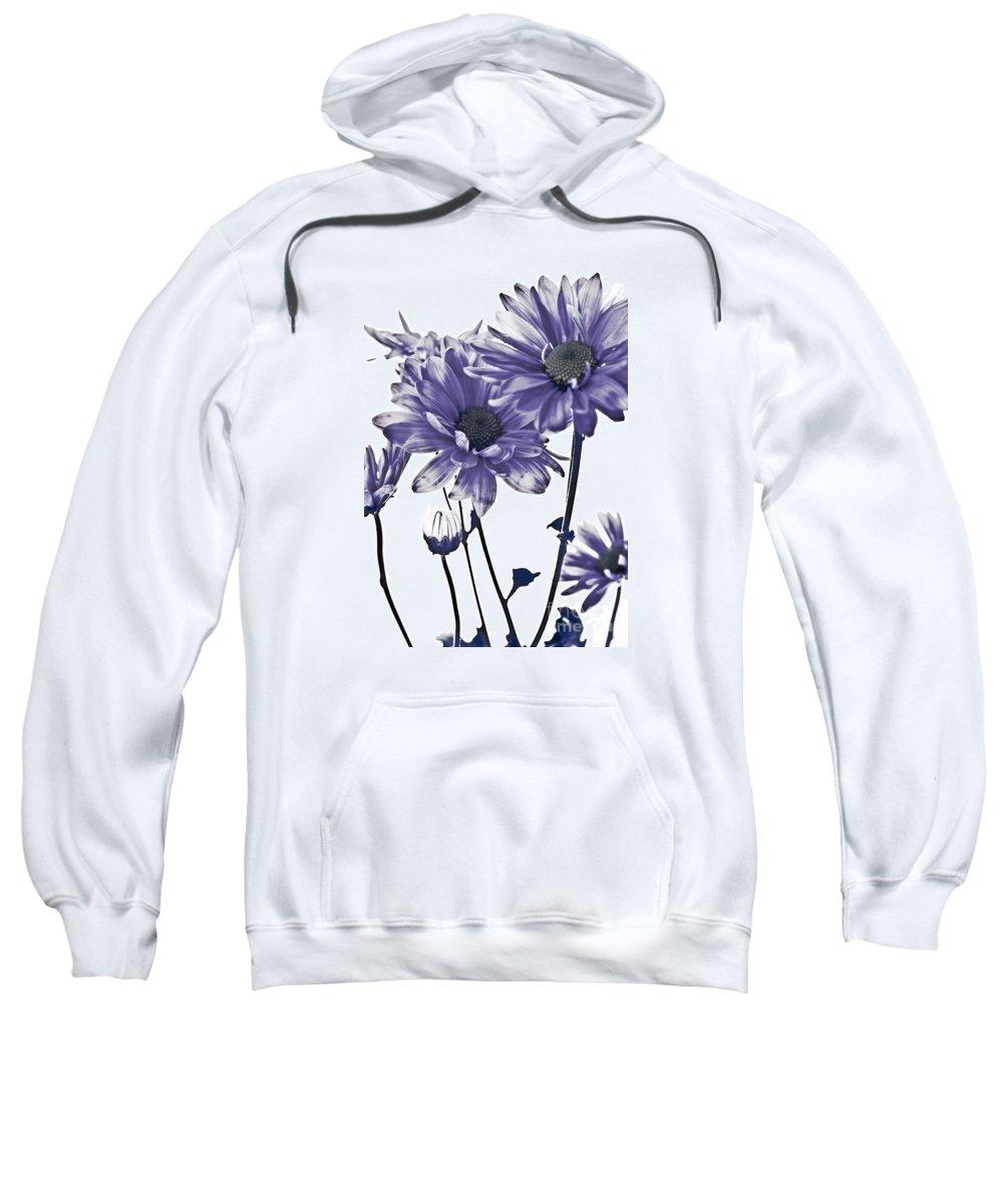Flowers Sweatshirt featuring the photograph Purple Daisies by Robin Lynne Schwind