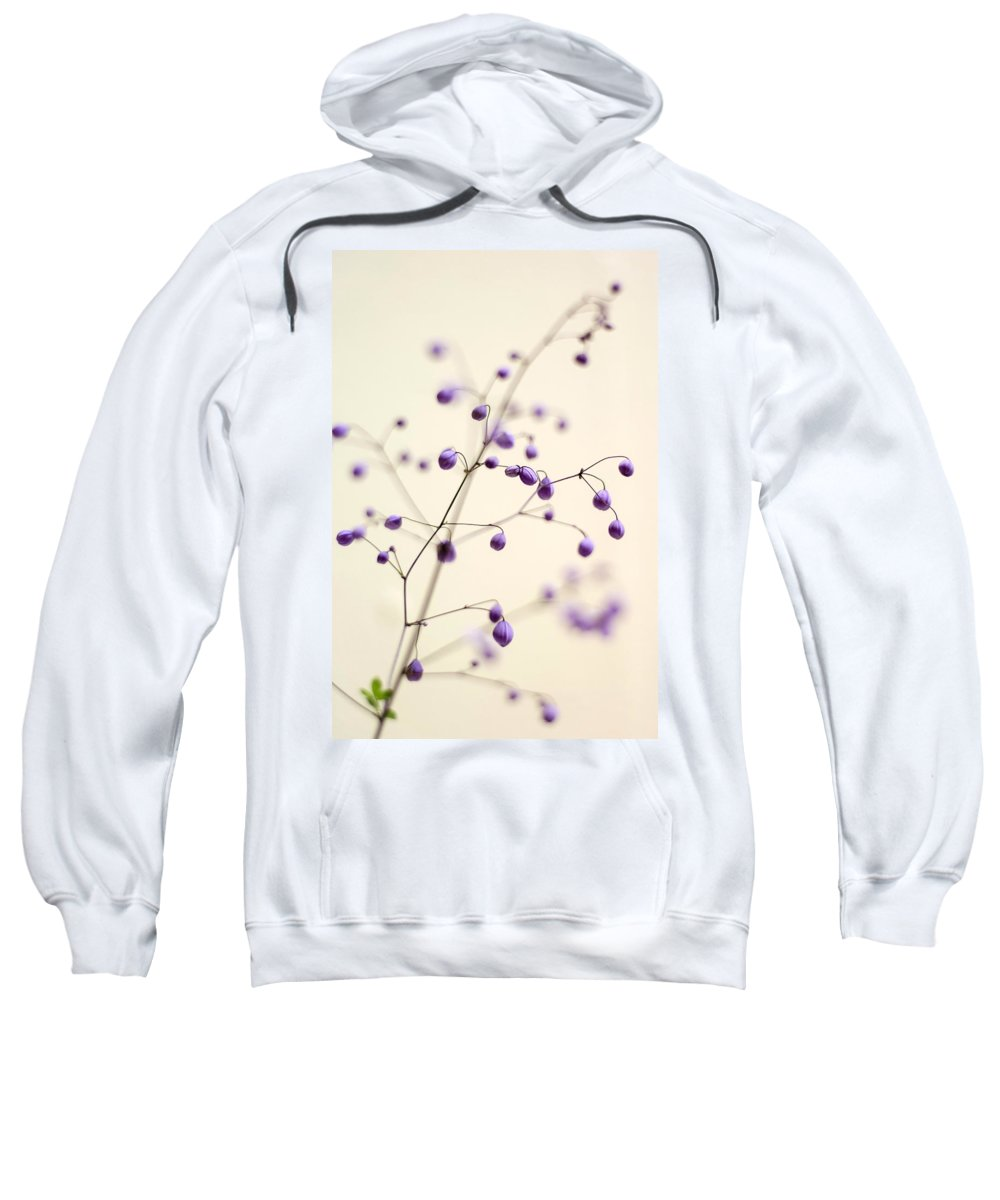 Meadow Rue Sweatshirt featuring the photograph Purple Droplets by Heather Applegate