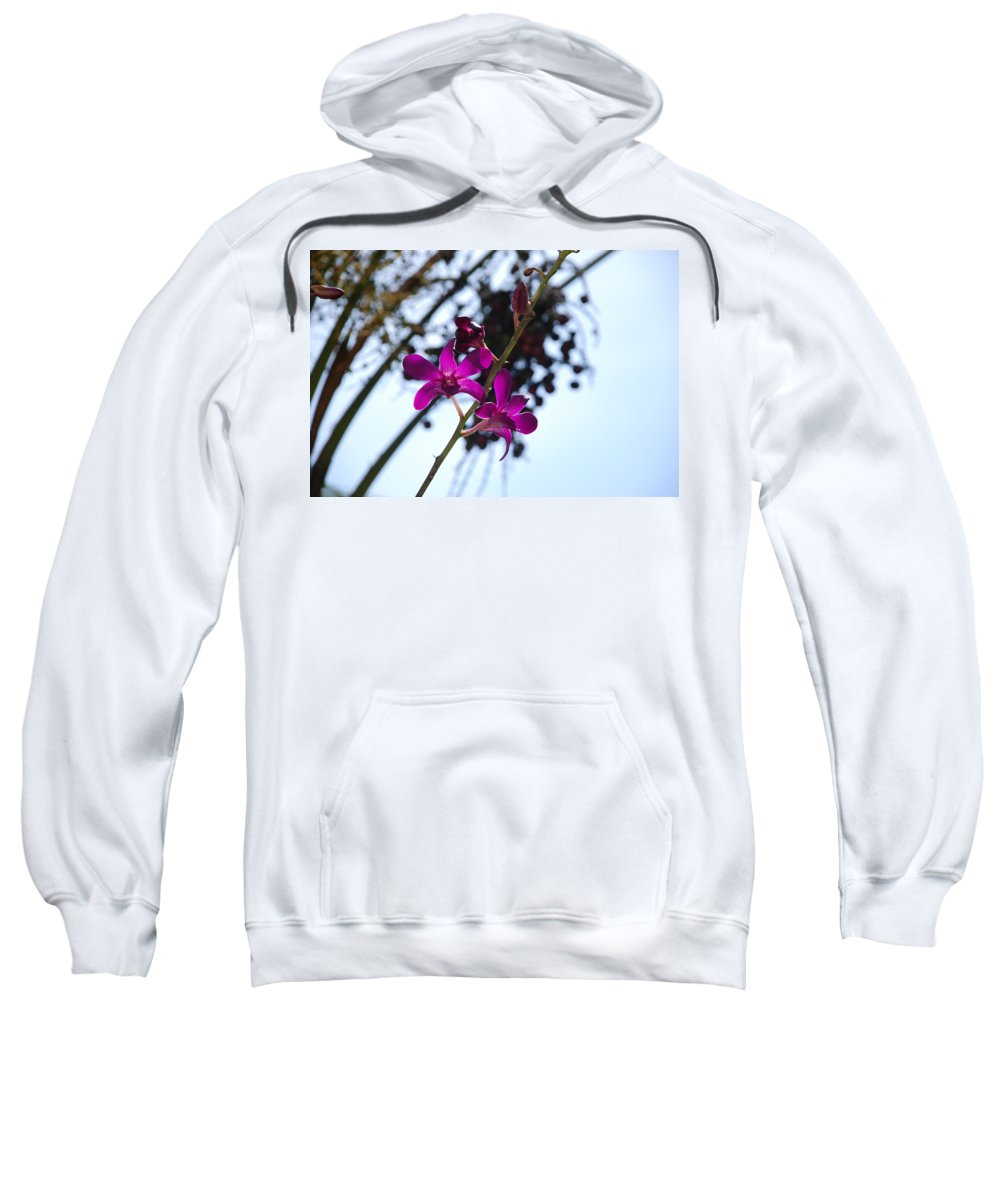 Macro Sweatshirt featuring the photograph Purple Flowers In The Sky by Rob Hans