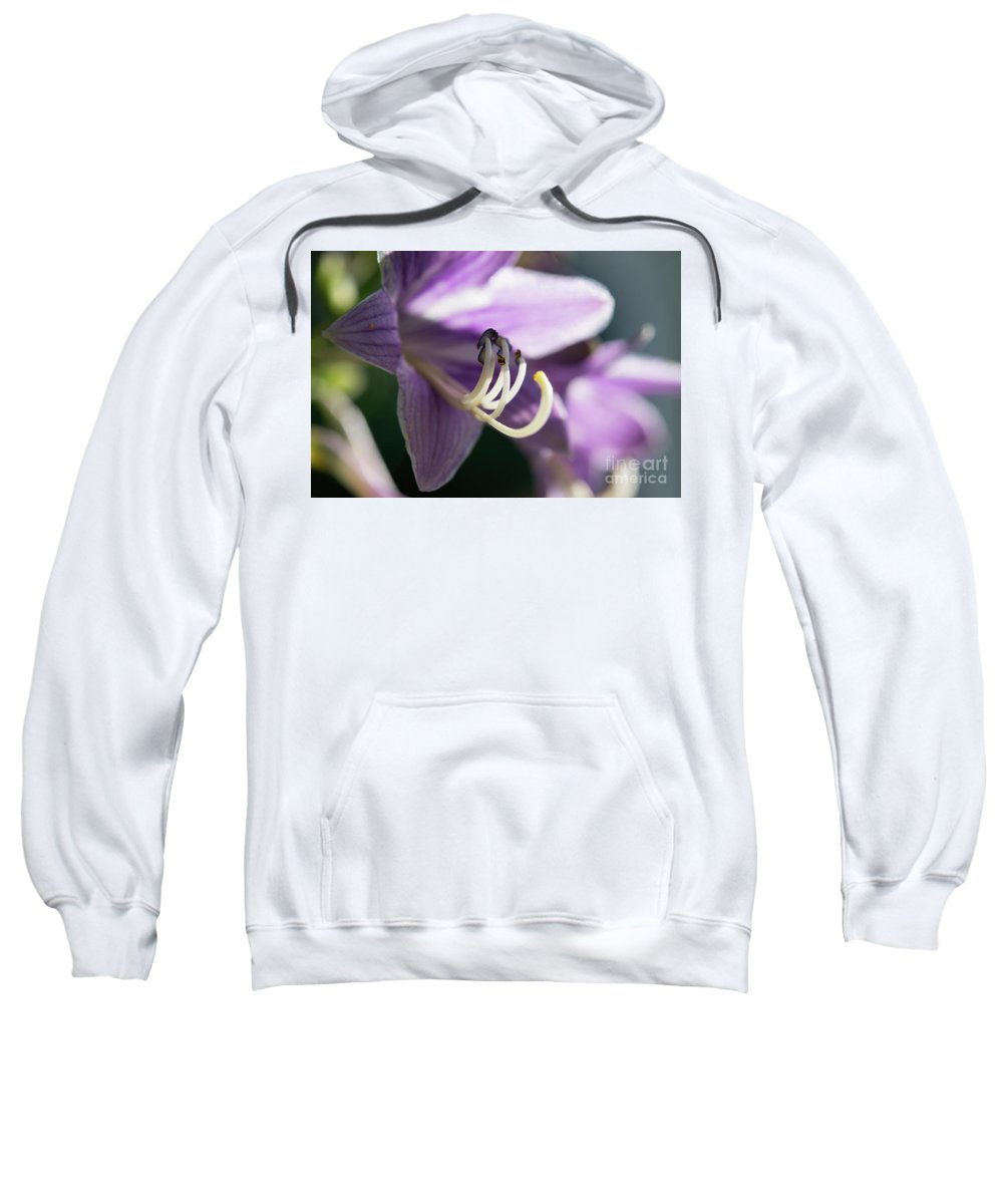 Ohio Flower Sweatshirt featuring the photograph Purple Flowers by Michelle Himes